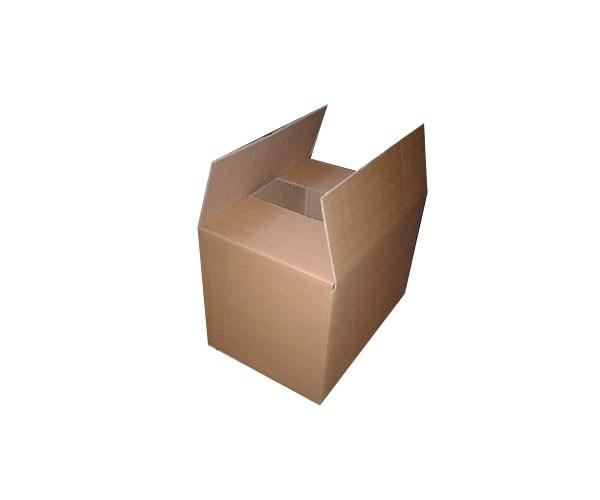 carton new 2 1 - کارتن متوسط اکبند