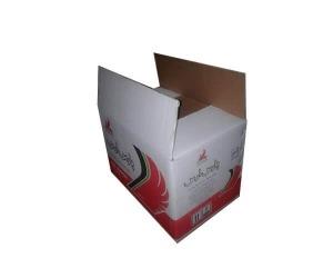 carton new 3 300x250 - carton new 3